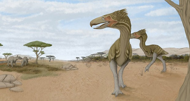 10 Giant Animals that lived after the Dinosaurs