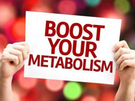 Metabolism: The Science behind Your Body